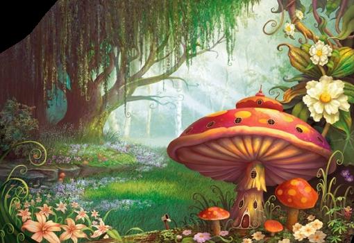 tube champignons