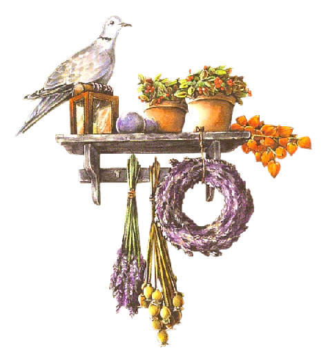 http://purplefolie.p.u.pic.centerblog.net/o8jkxrv1.png