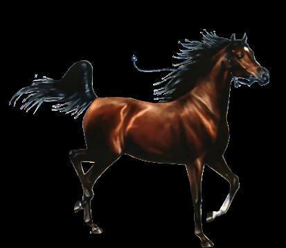 caballo gifs: