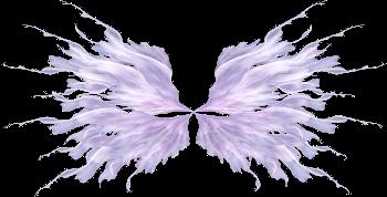 Image du Blog purplefolie.centerblog.net